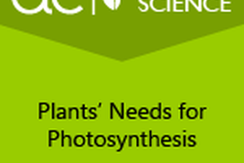 AC Life Science: Plants' Needs for Photosynthesis