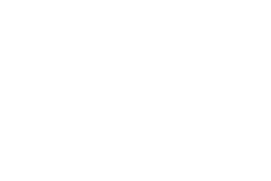 SAP Business One Mobility Demo