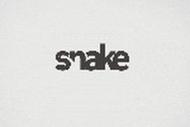 Snake live game