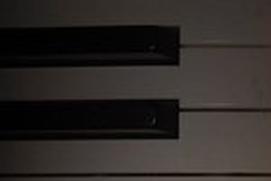 Musical Instruments(Piano/Guitar)