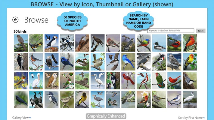 View: see species in gallery, thumbnail or classic icon view