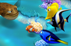 Dive into the beauty of Nemo's Reef!