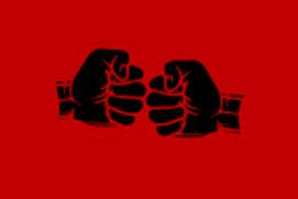 MMA Passion