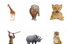 And also Jungle animals