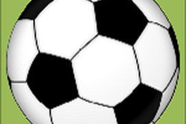 Facts About Soccer