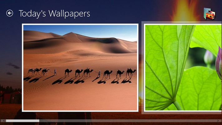 Daily Wallpapers for Windows 8