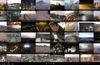 Thumbnail View with App Bar