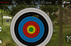 Real Archery King : Bow Arrow Hunting for Windows 8