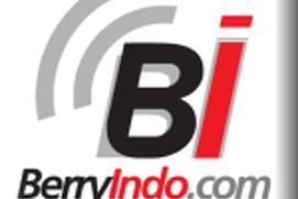 BerryIndo.com
