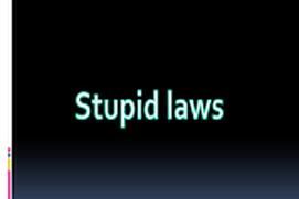 Crazyy Laws