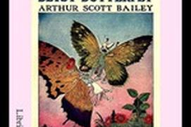 The Tale of Betsy Butterfly - Arthur Scott Bailey