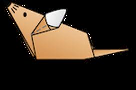 Origami Tutor