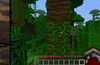 Encyclopedia of Minecraft® for Windows 8
