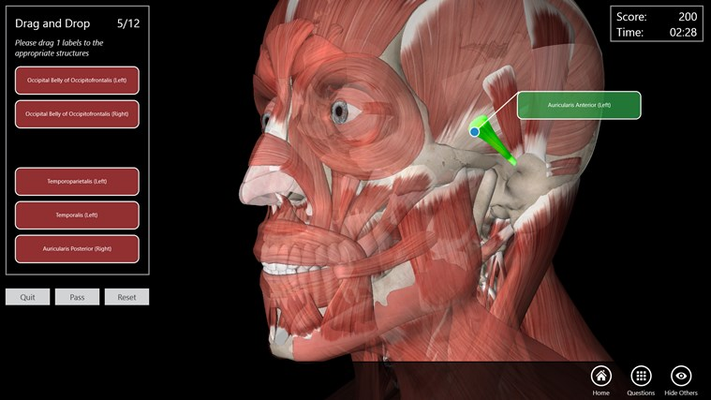 Essential Anatomy 3 for Windows 8