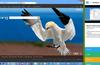 Lync Handbook for Windows 8