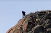 Climber on Riffelberg