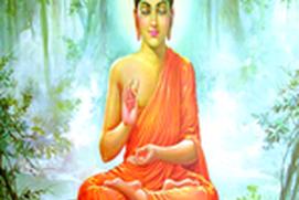 The Teachings of Buddah