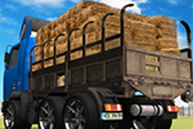 Transport Truck Farm Ride 3D - Village Farming Sim