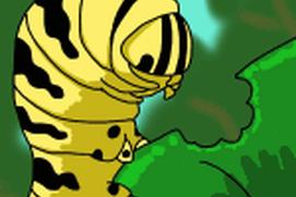Caterpillar's Micro Adventure