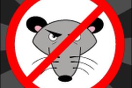 Mice Invasion