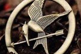 The Hunger Games Windows App