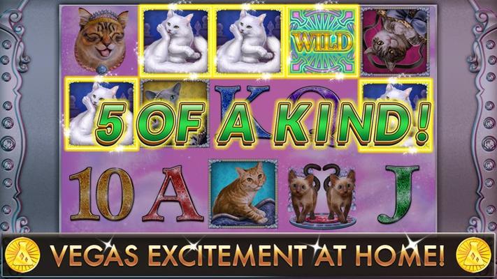 Slot Casino - Glitzy Kitty Free Slots for Windows 8