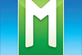 mLevel