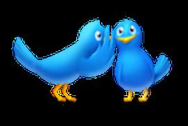 Bird Soundz