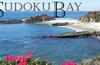 SudokuBay generates and solves Sudoku puzzles