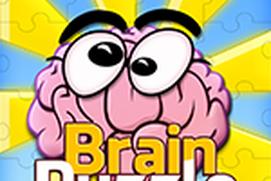 Brain Puzzle Fun