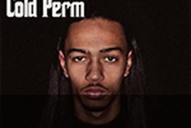 Ice Cold Perm Album App
