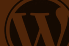 WordPress Beginner - TNews