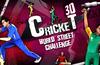 Cricket world street challange