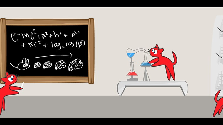 Cats doing science!