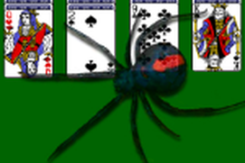 Spider Solitaire 8