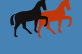 Equine Beyond Horse