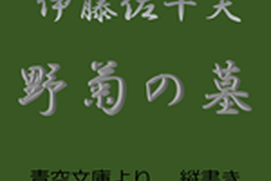 伊藤佐千夫 野菊の墓 (縦書き、青空文庫より)