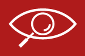 Eye Spy PI