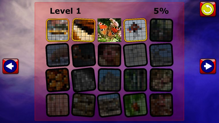 Which puzzle next?