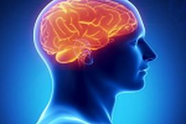 Human brain memory increase tecniqe
