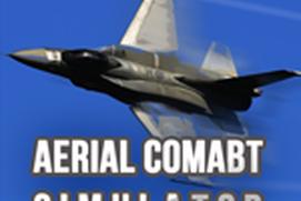 aerial combat simulator