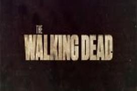 Walking Dead Fan