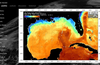 Check out sea surface temperatures.