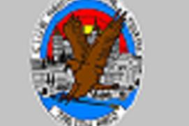 Aguila Imperial TA