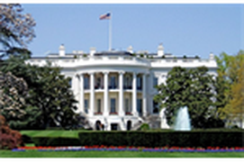Free President Trival Quiz Game