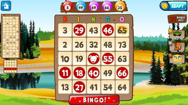 Play one to four cards of bingo!