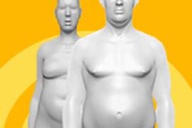 Como a obesidade afeta o corpo