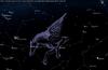 Pegasus constellation