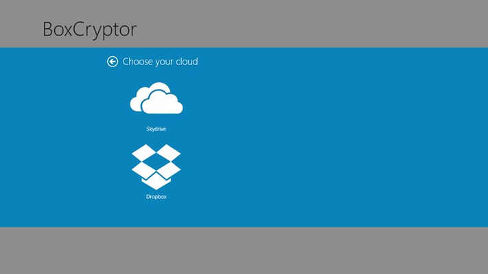 BoxCryptor supports Dropbox and Microsoft SkyDrive. Additional providers like Google Drive will be added soon.