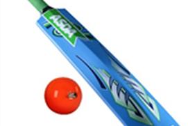 Cricket India Info